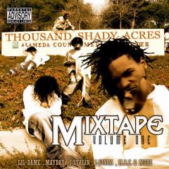 Thousand Shady Acres - Shady Nate