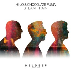 Steam Train - HI-LO, Chocolate Puma