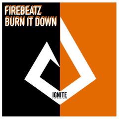 Burn It Down (Single)