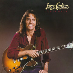 Sleepwalk - Larry Carlton