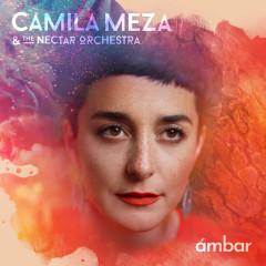 Milagre dos Peixes - Camila Meza