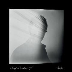 Shades - Doyle Bramhall II