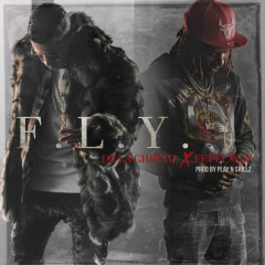 F.L.Y (Single)