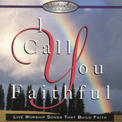 I Call You Faithful - Various Artists
