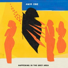 Happening in the Grey Area (Streaming Only) - Amir Obe