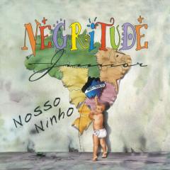 Nosso Ninho - Negritude Junior