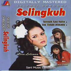 Seleksi Dangdut Selingkuh - Various Artists