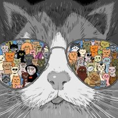 밤 고양이 - BenchWeLeo