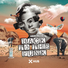 Back To The Funk (Single)
