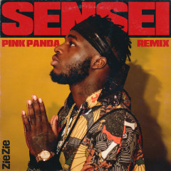 Sensei (Pink Panda Remix)