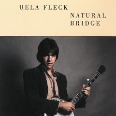 Natural Bridge - Béla Fleck