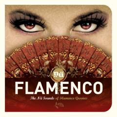 Nü Flamenco - Various Artists