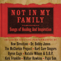 Not In My Family: Songs Of Healing And Inspiration - Various Artists