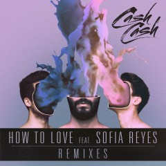 How to Love (feat. Sofia Reyes) [Remixes] - Cash Cash, Sofia Reyes