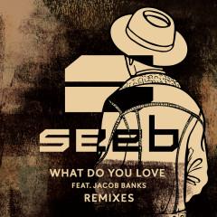 What Do You Love (Remixes) - SeeB, Jacob Banks