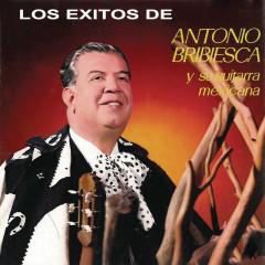 Los Éxitos de Antonio Bribiesca Y su Guitarra Mexicana - Antonio Bribiesca