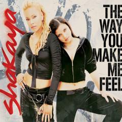 The Way You Make Me Feel - Shakaya