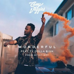 Wonderful - Casey Veggies,Ty Dolla $ign