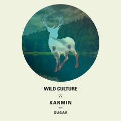 Sugar (Remixes) - Wild Culture, Karmin