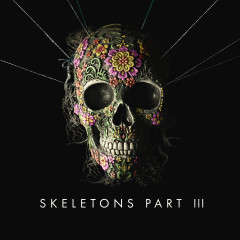 Skeletons: Part 3 - Missio
