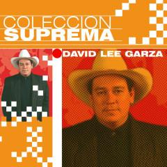 Coleccion Suprema - David Lee Garza