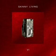 6 - Skinny Living