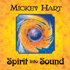 Spirit Into Sound - Mickey Hart