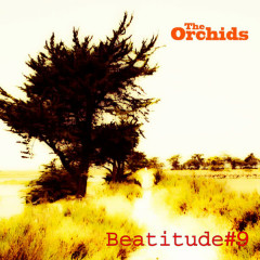 Beatitude #9 - The Orchids