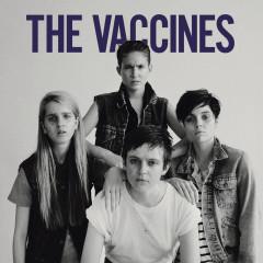 Live in Brighton (2012) - The Vaccines