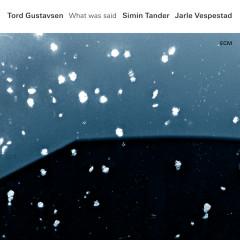 What Was Said - Tord Gustavsen, Simin Tander, Jarle Vespestad