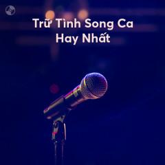 Trữ Tình Song Ca Hay Nhất - Various Artists