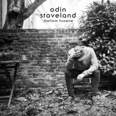 Mellom husene - Odin Staveland