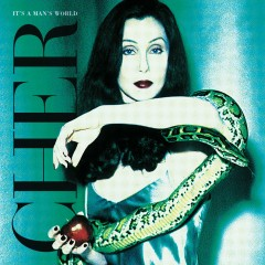 It's a Man's World - Cher