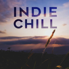 Indie Chill - Various Artists