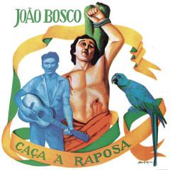 Caça A Raposa - João Bosco