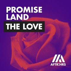 The Love (Single) - Promise Land