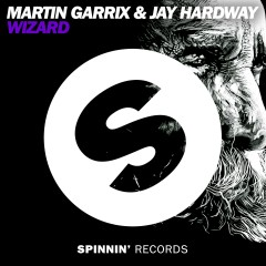 Wizard - Martin Garrix, Jay Hardway