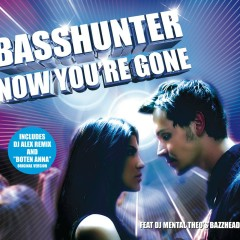Now You're Gone (feat. DJ Mental Theos Bazzheadz) - Basshunter, DJ Mental Theos Bazzheadz