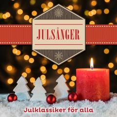 Julsånger - Julklassiker för alla - Various Artists