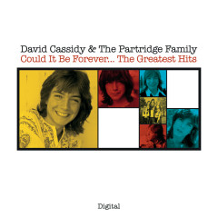 Could It Be Forever...The Greatest Hits - David Cassidy