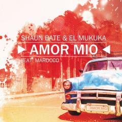 Amor Mio (Single)