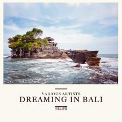 Dreaming in Bali - Various Artists