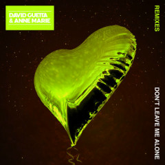 Don't Leave Me Alone (Remixes) - David Guetta