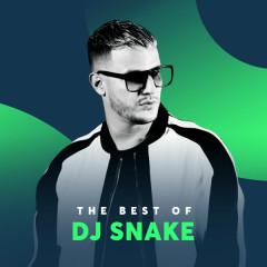 Những Bài Hát Hay Nhất Của DJ Snake