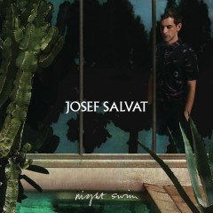 Night Swim - Josef Salvat