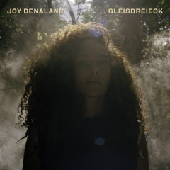 Gleisdreieck (Deluxe Edition) - Joy Denalane