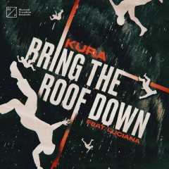 Bring The Roof Down (Single)