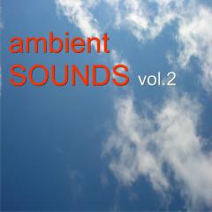 Ambient Sounds Vol.2 - Various Artists