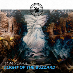 Flight Of The Buzzard (Single)