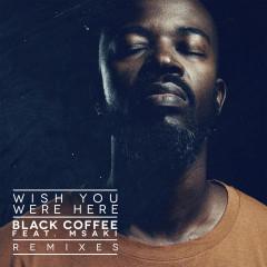 Wish You Were Here (Remixes) - Black Coffee, Msaki